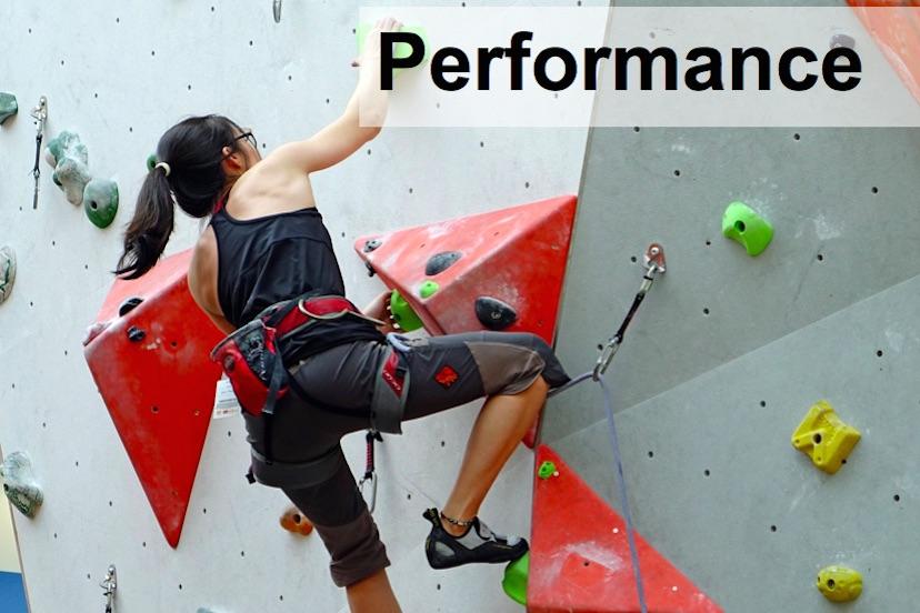 Performance climbing coaching / training