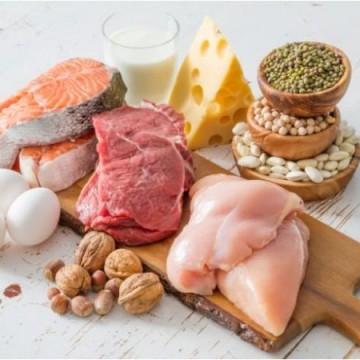 Focus On – Protein Protein Protein