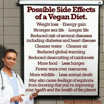 The Vegan In Me