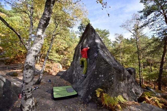 Katia close to sending a 7a at Apremont , Fontainebleau